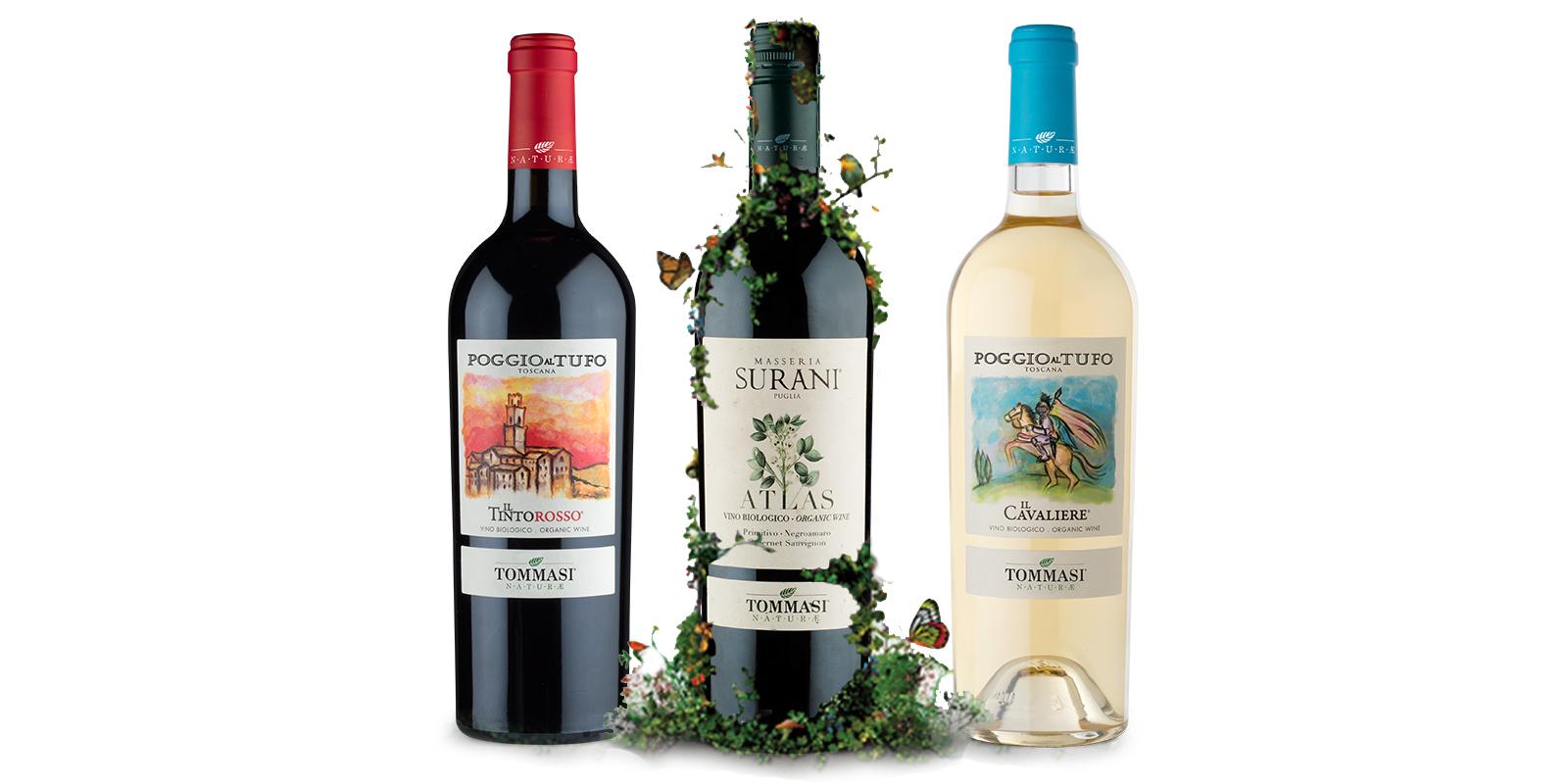 tommasi-organic-wines